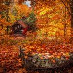季節の変わり目、季節商品で利益アップ